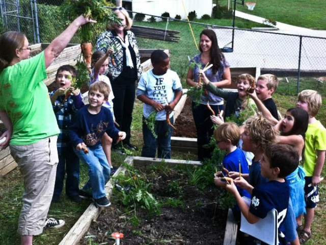 Create a school garden program