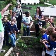 Create a children's gardening program